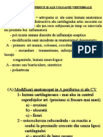 7 Artrozele periferice si ale coloanei vertebrale.ppt
