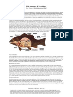 fish_anatomy___physiology