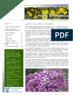 9 Septiembre Flora Aromatica