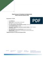 SCD-Raport Anual 2016