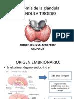 Expo Tiroides