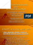 MPR - Estructura NPP - Proceso Común