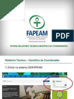 Relatorio SIGFAPEAM coordenador