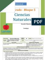 Plan 4to Grado - Bloque 5 Ciencias Naturales