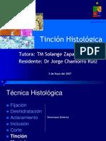 3-sem-tinciones (1)