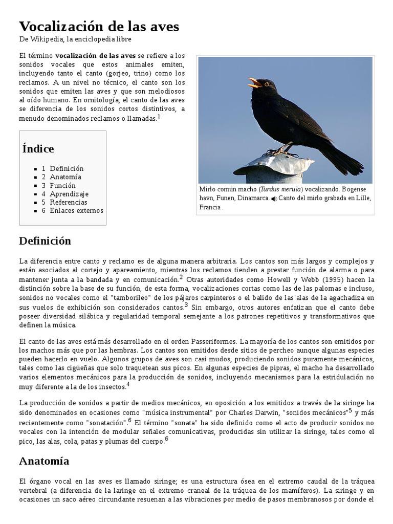 Vocalización de las Aves (Gorjeo, Trino)
