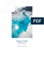raport 25.3232.docx