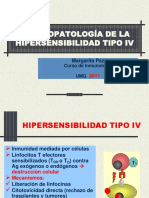 c 14 Hipersensibilidad Tipo IV