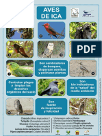 Afiche de Aves.pdf