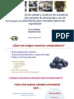 1_cropcheck_arandanos