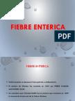 Fiebre Enterica