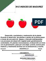 cosecha de frutos
