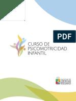 Programa Curso Psicimotricidad270117