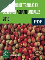 El Mercado de Trabajo en en El Sector Agrario Andaluz 2010