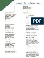 75642574-GEORGE-TOPARCEANU-Balada-Unui-Greier-Mic.pdf