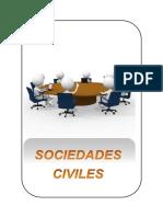sociedadesciviles-140711232137-phpapp01.docx