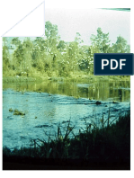 mod2_pericias_odontologicas.pdf