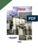 TMS_Gestao_TransportesV8.pdf