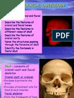 Craniofacial Osteology 1
