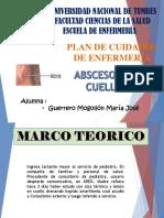 PCE Neumonia