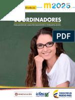 Descripción Preliminar de Niveles de Desempeño Coordinadores ECDF