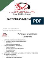 Particulas Magneticas Cap i II III IV v Vi Vii
