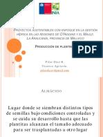 PlantinesINIA-Ago2015
