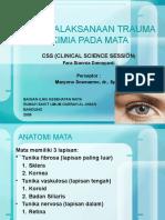 referat - Trauma Kimia pada mata