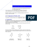Unit 12R - Nucleic Acids
