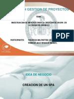 89518202-Investigacion-de-Mercado-Spa.pdf