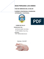 INVESTI-POLLO (1).docx