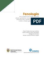 Fenologia de La Palma de Aceite Africana y Del Hbrido Interespecfico