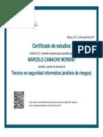 Técnico en Seguridad Informática (Análisis de Riesgos) - Carlos Slim