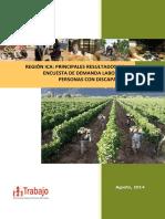 resultados_edo_discapacidad_ica_2013.pdf