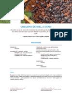 Programa Cosecha de miel.pdf