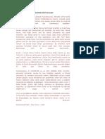 Muhammed Maliki-Siyon Liderlerinin Protokolleri.pdf