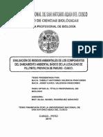 Tesis-riesgos-ambientales-pilpinto.pdf