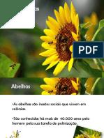 Abelhas- Trabelho de CIENCIAS.pptx