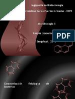 3Caracterizacion Fisiologica de Bacterias
