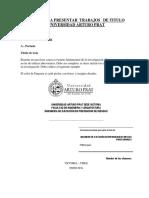 Formato Tesis UNAP 2017