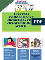 procesocogni.pdf