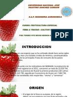 fresa ppt.pptx