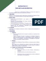 INSTRUCTIVO_005.pdf