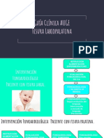 Guía Clínica AUGE Fisura Labiopalatina