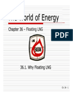 36A - Why Floating LNG