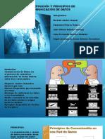1.1 Definicion y Principios de La Comunicacion