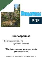gminospermas2