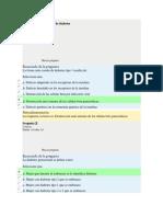 Informe Andrea 2017 - Copia