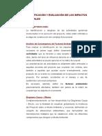 5. Identificación y Evaluación de Impactos