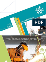 PRODUCCION DE PETROLEOS 0.1.pptx.pptx